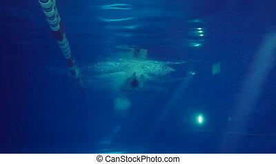 piękny, motyl, powolny, strzał, kałuża, pływak, ruch, uderzenie, podwodny, profesjonalny