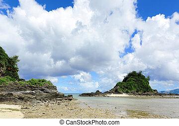 piękny, motyw morski, japonia, okinawa