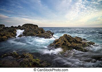 piękny, motyw morski, skład, waves., natura