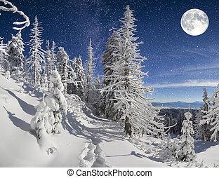 piękny, noc, zima krajobraz, w, przedimek określony przed rzeczownikami, góra, las
