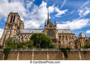piękny, notre-paniusia, sky., paryż, od, sławny, pod, katedra