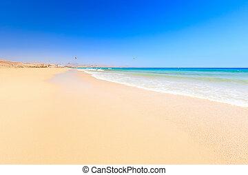 piękny, ocean, plaża