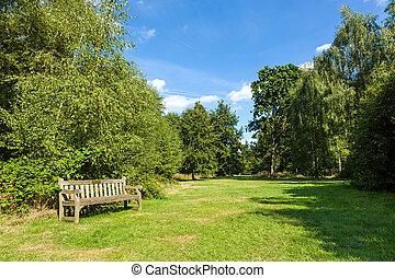 piękny, ogród, park, soczysty, ława, zielony