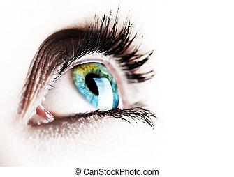 piękny, oko, odizolowany, na białym