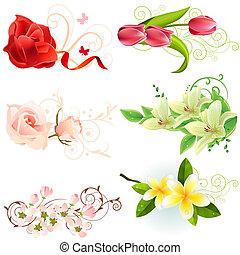 piękny, różny, komplet, elementy, projektować, kwiatowy