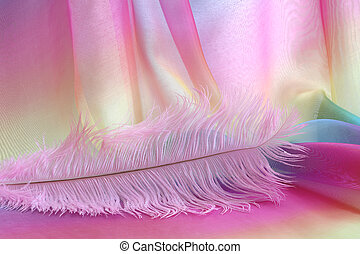 piękny, różowy, pióro, delikatny, tło