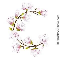 piękny, robiony, ułożyć, okrągły, kwiaty, magnolia