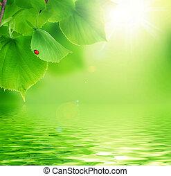 piękny, scena, natura