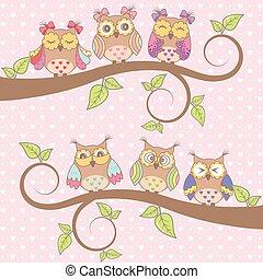 piękny, sowy, miłość, karta