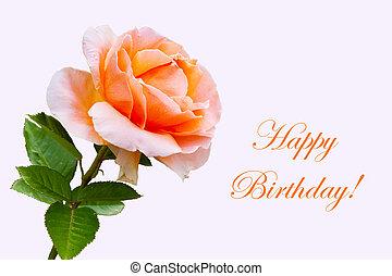 piękny, szczelnie-do góry, kwiat, róża, urodzinowa karta, szczęśliwy