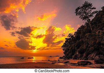 piękny, tropikalny, zachód słońca