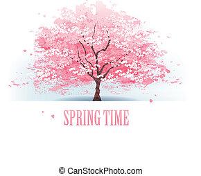 piękny, wiśniowe drzewo, kwiat