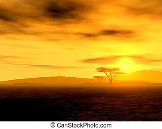 piękny, zachód słońca, afrykanin