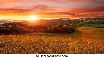 piękny, zachód słońca, na, przedimek określony przed rzeczownikami, pole, -, w, duchy, od, pomarańcza