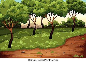 piękny, zielony krajobraz, natura