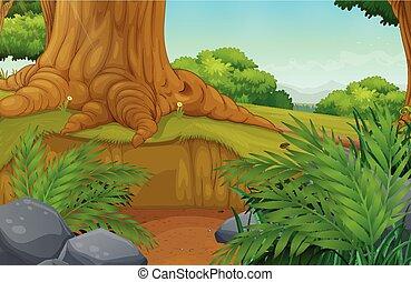 piękny, zielony las, krajobraz