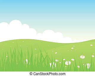 piękny, zielony, pola, krajobraz.
