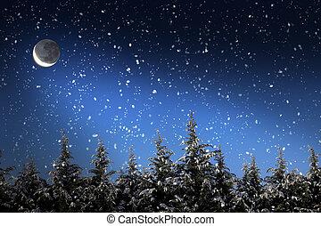 piękny, zima krajobraz, z, śnieg nakrył drzewa, w nocy