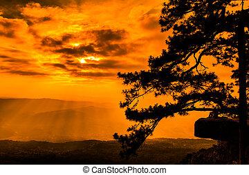 piękny, zima, zachód słońca, na, urwisko, w, przedimek określony przed rzeczownikami, natura, z, sylwetka