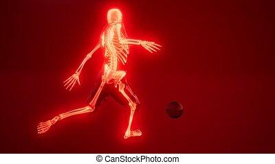 piłka nożna, widoczny, skandować, kość, gracz, medyczny