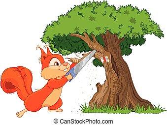 piły, wiewiórka, gałąź, zabawny
