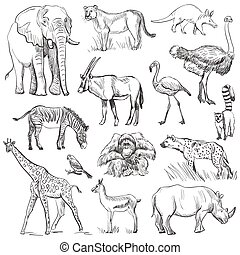 pianeta, disegnato, set, mano animale