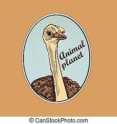pianeta, logotipo, simbolo, animale