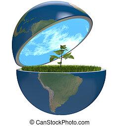 pianeta, pianta, dentro