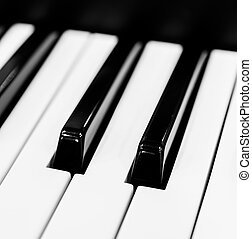 Piano keys (Select somepoint focus)
