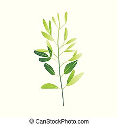 pianta, astratto, vettore, verde, cartone animato, icona