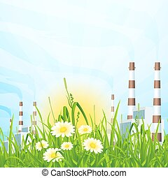 pianta, erba, alimentazione verde