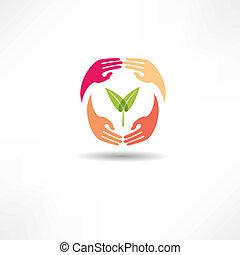 pianta, mani, icona
