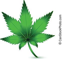 pianta, marijuana, canapa, vettore, logotipo, icona