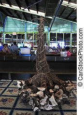 pianta, pepe, vendita,  fijian, radici, mercato