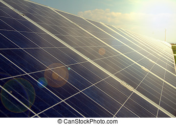pianta, potere, energy., solare, usando, rinnovabile