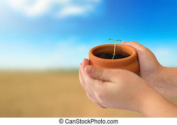 pianta, presa a terra, natura, sopra, mani, giovane, fondo, bambino, conservato vaso