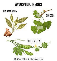 pianta, set, rami, ayurvedic, isolato, erbe, white.