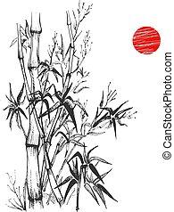 pianta, set, schizzo, bambù, sumi-e
