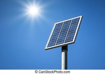 pianta, solare