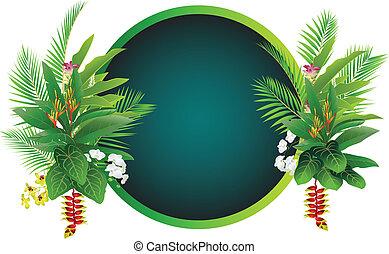 pianta tropicale, fondo