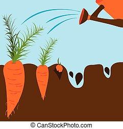 pianta, vettore, crescita, stages., illustrazione