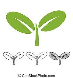pianta, vettore, icona