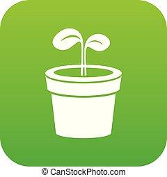 pianta, vettore, verde, icona