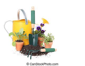piantatura, fiori, giardino, nuovo, erbe