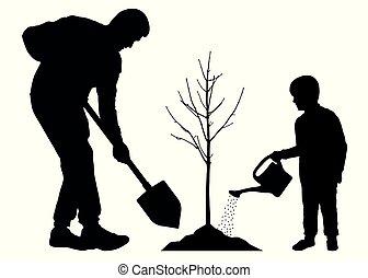 piantatura, pianta, silhouette, padre, seedling., albero, figlio, vettore, fondo, bianco, baby.