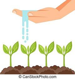 piante, articoli, mano., irrigazione, illustrazione,...