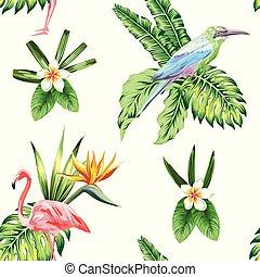 piante, composizione, tropicale, fondo, fiori bianchi, uccello