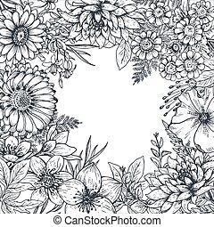 piante, cornice, mano, floreale, disegnato, fiori