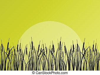 piante, dettagliato, esterno, manifesto, lago, illustrazione, acqua, silhouette, vettore, canna, fondo, selvatico