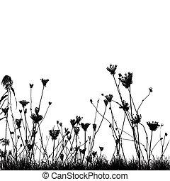 piante, erba selvaggia, silhouette, naturale